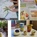 Geslaagde workshops herfst 2014